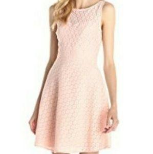 Betsey Johnson Dress NWT size 8